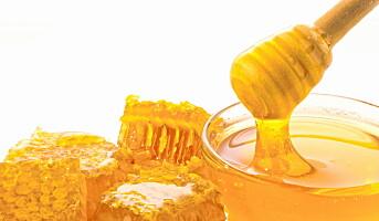 Honningcentralen vant gull i internasjonal honningkåring