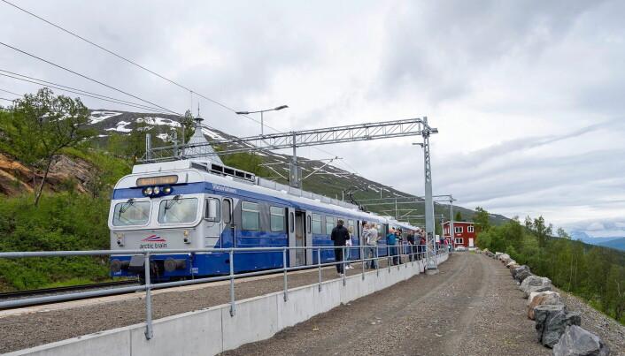 Togreisen fra Narvik til Sverige regnes som en av verdens vakreste togreiser. (Foto: Arctic Train)