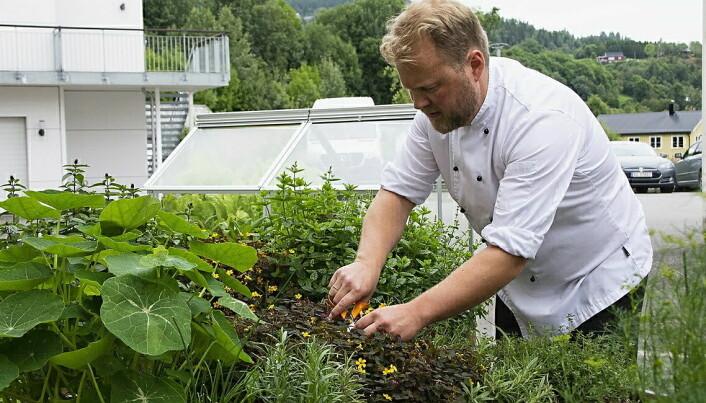 Tidligere vinner av Matomsorgsprisen, Bjørn Erik Vangen, er kjøkkensjef på Leksvik Helsetun i Trøndelag. (Foto: Matriketmidt.n0)
