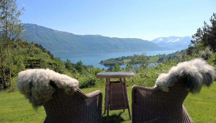 Utsikt mot Storfjorden. (Foto: Heidi Fjelland)