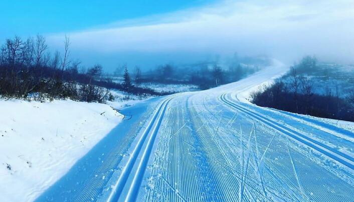 Klare skiløyper på Skeikampen denne uka. (Foto: Instagram, Bergseng Seter, Skeikampen)