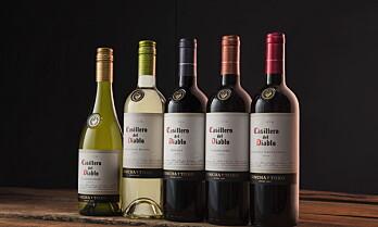 Kåret til årets vinprodusent i «den nye vinverden»