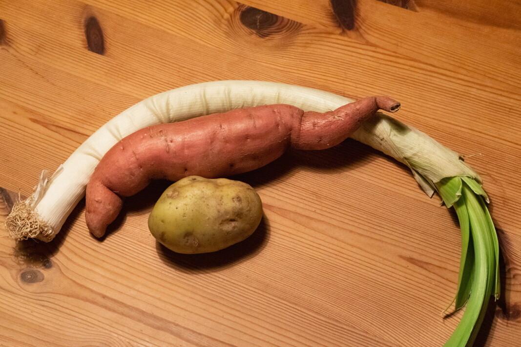 «Uperfekt» frukt og grønt er populært blant nordmenn, ifølge en undersøkelse. (Foto: Too Good To Go)