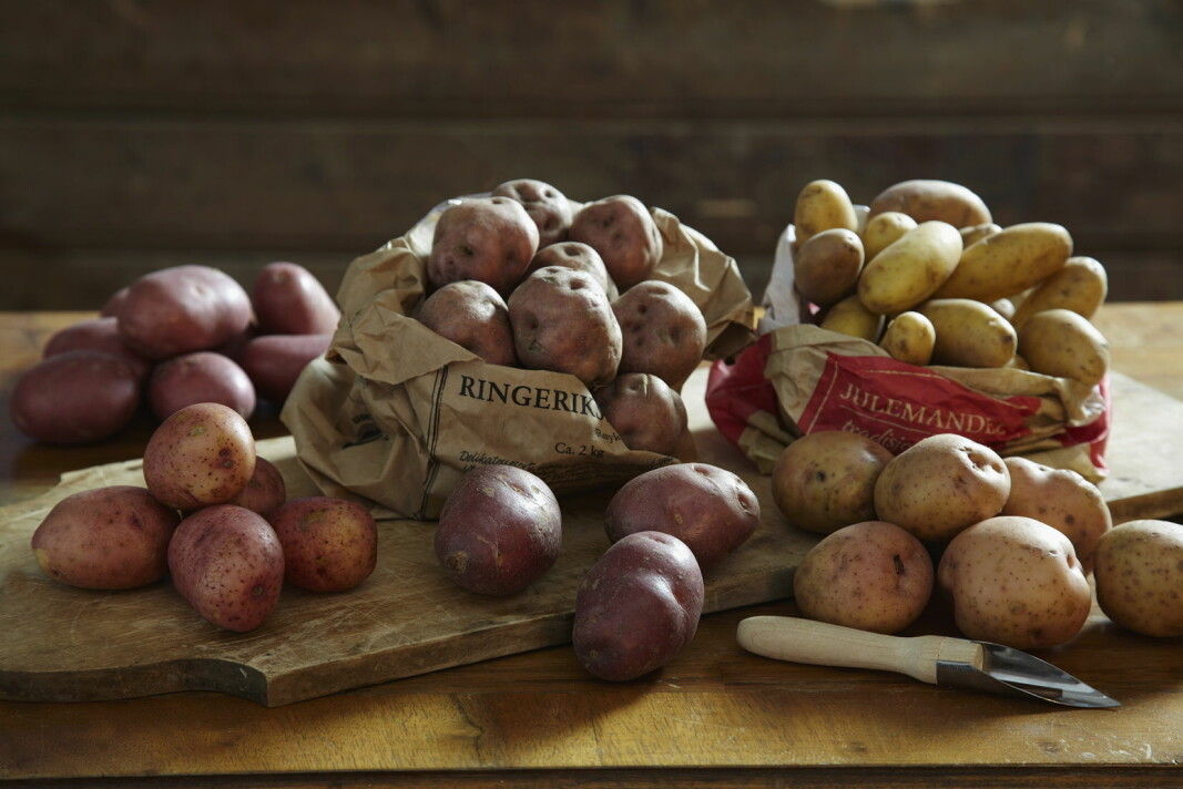 Det er ikke så mange som har sterke preferanser til potetsorter gjennom året, men akkurat til julematen vet folk hva de vil ha. (Foto OFG)