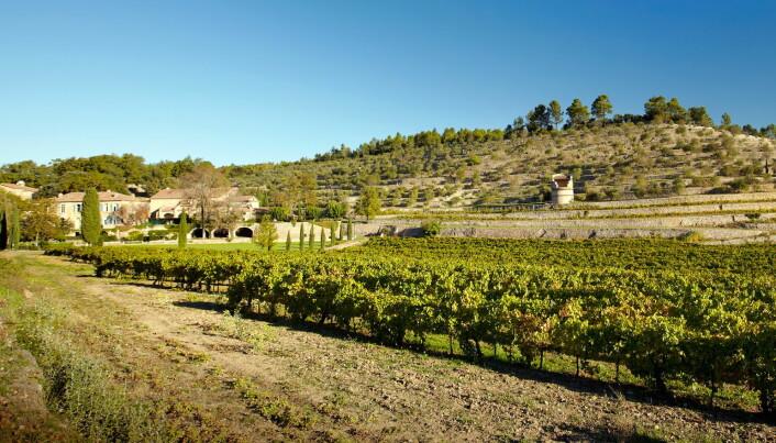 Slottet Château Miraval er omkranset av vinmarker. (Foto: Chapuis-photo.com for Miraval)