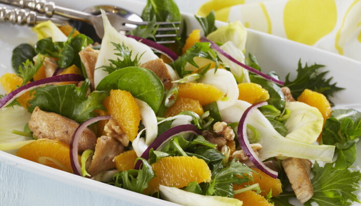 Kyllingsalat med appelsin er mettende og friskt til lunsj. (Foto: OFG)Click to add image caption