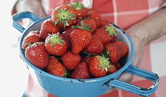 Vi elsker jordbær - naturens sunne godteri