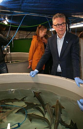 Fiskeriminister Odd Emil Ingebrigtsen besøkte nylig Polarfisks anlegg i Meløy i Nordland, og lot seg imponere. (Foto: Liv Toril Pettersen)