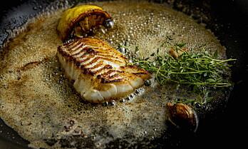 Båtsfjordtorsk skal revolusjonere markedet for fryst hvitfisk
